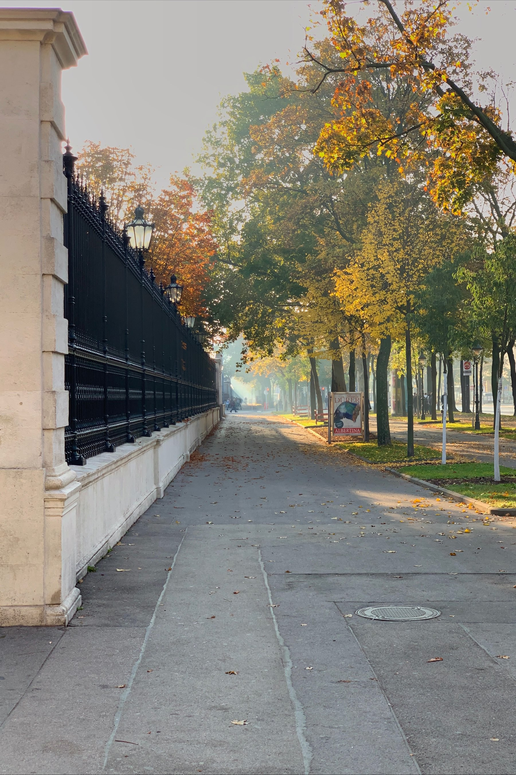 empty sidewalks with trees on the right side, a fence on the left side and a lot of light